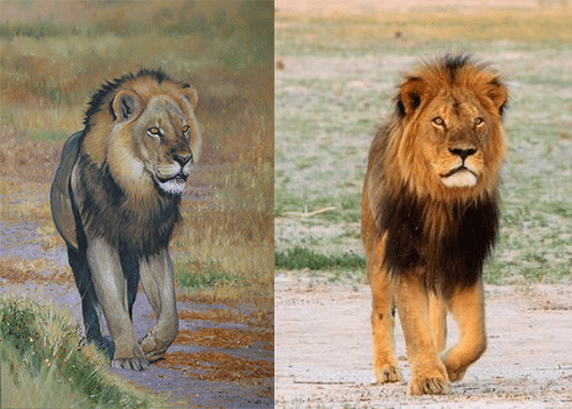 Pip McGarry donates 'Cecil' painting to raise money for LionAid on World Lion Day (10th August)