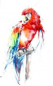 Julia Cassels, Red Macaw, available at The Frame, Odiham.