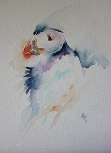 Jean Haines Puffin