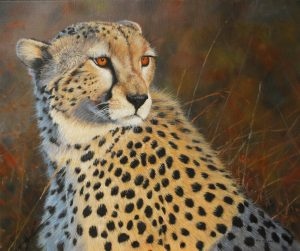 Wildlife Artist Pip McGarry's 'Masaai CHeetah' in his upcoming exhibition at The Frame Gallery in Odiham.