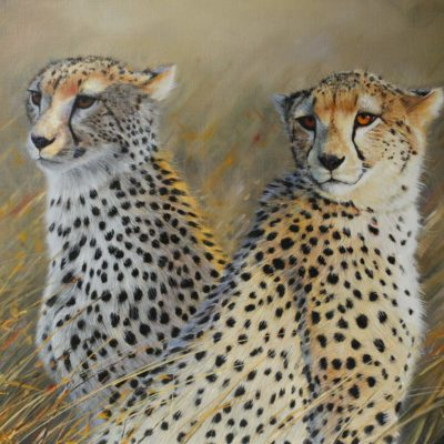 Cheetah Twins by Pip McGarry in The Frame Gallery in Odiham.