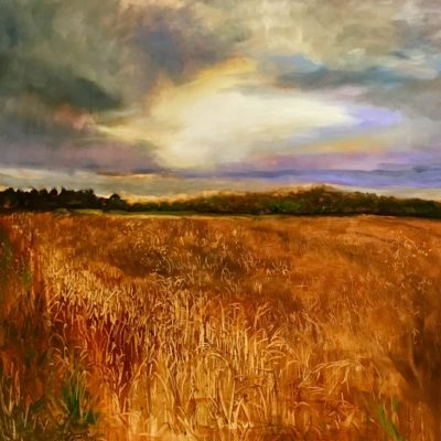 "'Harvest Rising"" 89cm x 89cm Oil on Canvas Framed £750. Available at The Frame Gallery in Odiham."