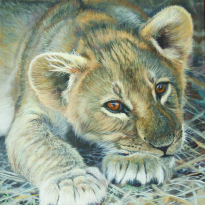 'LION CLUB RESTING' 12 by 14ins £3,950 available at The Frame Gallery in Odiham.