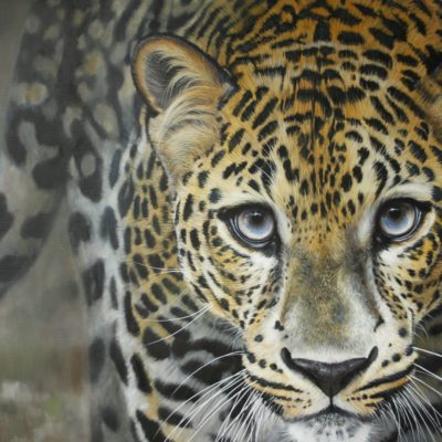 Leopard Queen 40 by 30ins 2018 Pip McGarry at The Frame Gallery in Odiham.