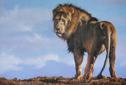 African King – Pip McGarry – 36 x 24″ £32,000.00